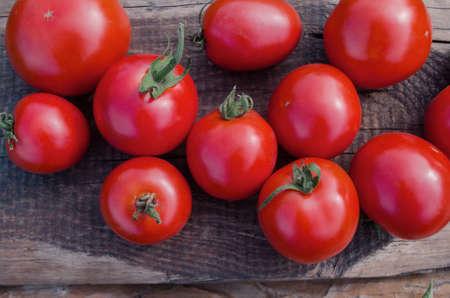 Cherry tomatoes on the vine. Fresh ripe organic cherry tomatoes Stock Photo