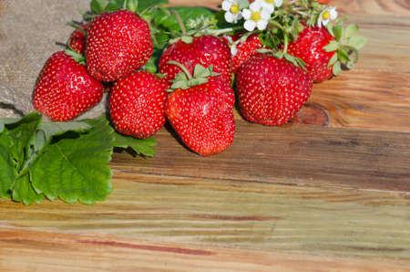 Strawberries on wooden table and plantations background. Free space on table. Slow living lifestyle