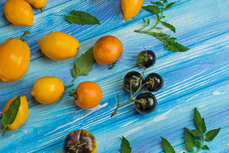 Variety fresh colorful tomatoes. Group of fresh tomatoes on a blue wooden background