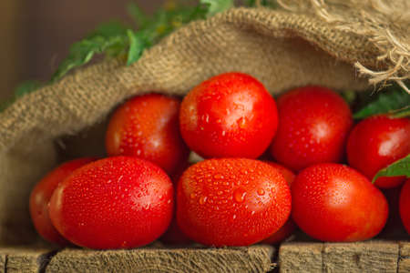 Long plum tomatoes on wooden table. Heap of fresh tomatoes in burlap bag on wooden table. Natural product concept.