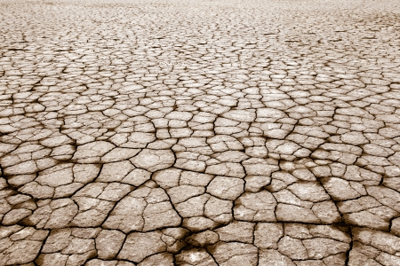 cracked parched earth in the future
