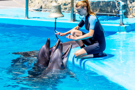 A young girl trains Glad beautiful dolphin in blue water in the pool on a bright sunny day on the original submission for tourists