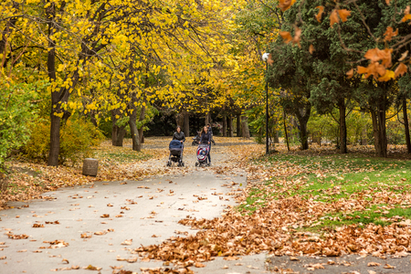 VARNA, BULGARIA - 13 November 2015: Autumn city park. Young mothers with small children walking in the park on a bright sunny day. Editorial