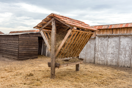 Manger with hay in a pen for large mammals. The traditional design of the trough for feeding animals during winter in hunting areas