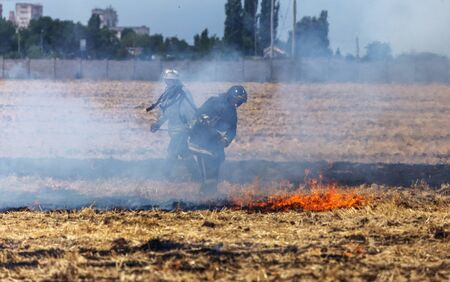 Raging steppe fires. On field after harvesting grain harness straw and straw. Ecological catastrophy. Fire and smoke destroy all life. Firefighters extinguish the Great Fire. Lot of smoke Foto de archivo