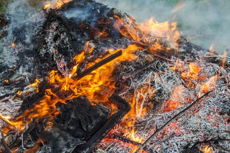 Farmer burns green waste in the concept of bonfire, bonfire outdoors, agriculture. Fallen leaves, branches and household trash burns in an autumn fire