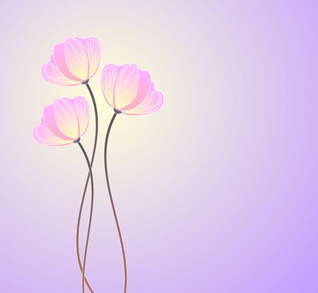 primrose: pink primroses   Illustration
