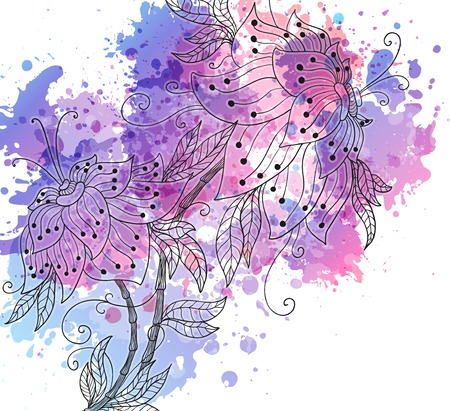 watercolor orchids   Vector