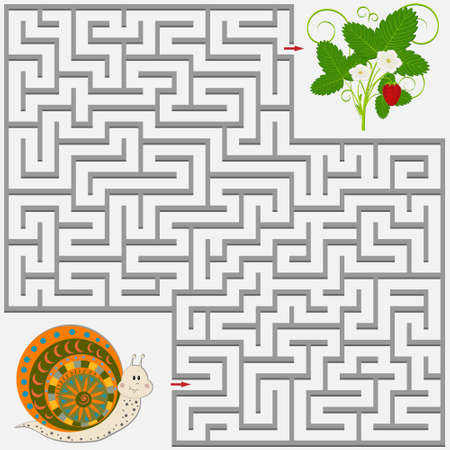 Maze puzzle with the image of a snail and a Bush with a strawberry berry, vector illustration on a white background, isolated images, education and development, decor of children's books