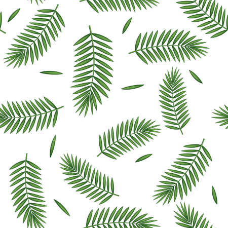 pattern with palm leaves on a white background, color vector illustration, design, decoration