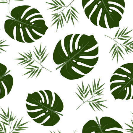 pattern with monstera and bamboo leaves on a white background, color vector illustration, design, decoration
