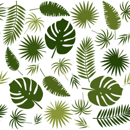 pattern of tropical leaves on a white background, color vector illustration, design, decoration, background