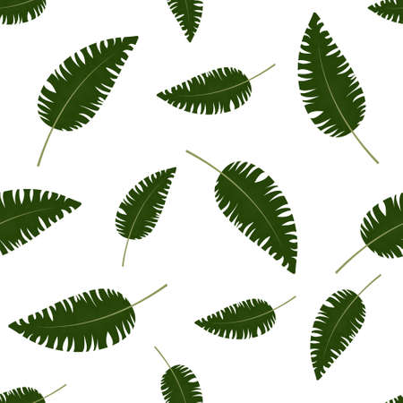 pattern and tropical leaves on a white background, color vector illustration, design, decoration, background Ilustrace