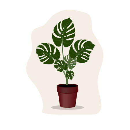 tropical flower in a monstera flower pot, isolated color vector illustration in flat style, design, decoration Vettoriali