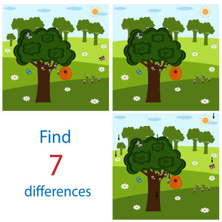 Bright Maze game PAL for children on the theme of the world and nature, it is necessary to find differences in the pictures the answers are, vector