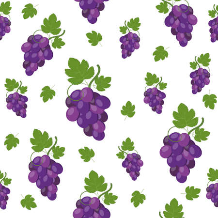Pattern of grapes on a white background, color vector illustration, print, textile, ornament, texture