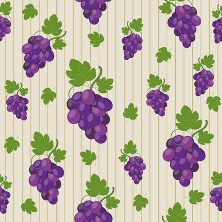 Pattern of grapes on a beige background with stripes, color vector illustration, print, textile, ornament, texture