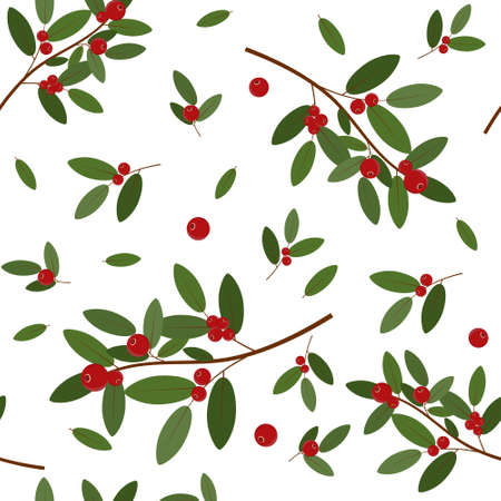 Pattern of red cranberries on a branch with leaves on a white background, color vector illustration, print, texture, textiles, design, decoration, background