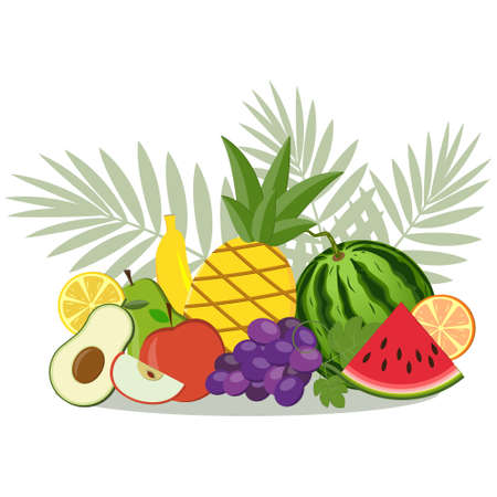 Set of exotic fruits collected in a composition, color vector illustration isolated on a white background, clipart, design, decoration