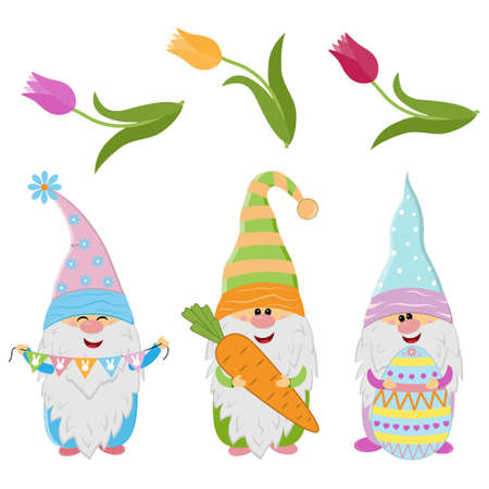 Easter gnomes and spring flowers tulips, cute character, vector illustration