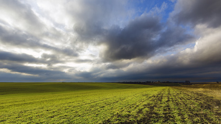 outgrowth: Agricultural field on evening Stock Photo