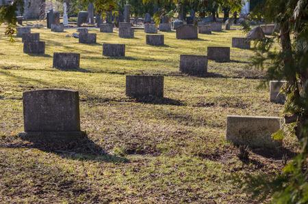 Graveyard scene honoring war veterans. Reklamní fotografie