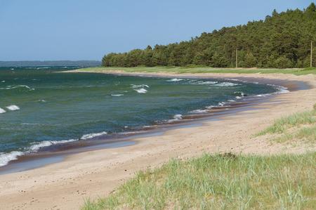 baltic sea: Scenic landscape of Baltic sea beach