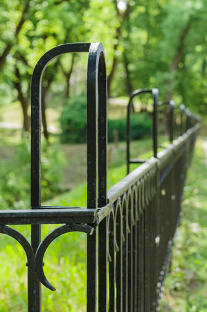 vanishing: Vanishing decorative wrought iron fence vertical view