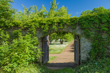 Opened wooden gate covered by green climbing plant against blue sky