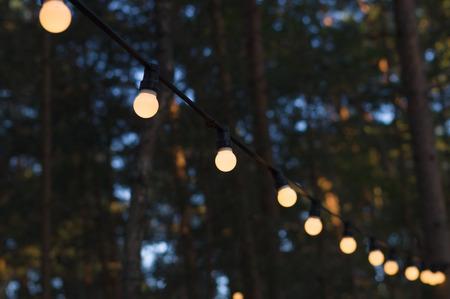 Light bulbs outdoor on a wire against dusk forest Reklamní fotografie