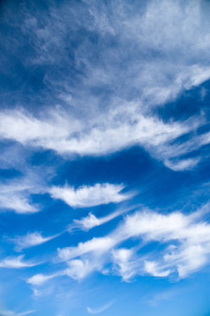 stratus: Cirrus and stratus clouds against bright blue sky, vertical wide angle view Stock Photo