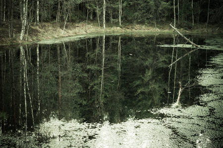 murky: Murky autumn forest and lake, reflection in water, vintage effect Stock Photo
