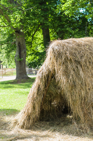 haymow: Haystack on sunny summer day, countryside view