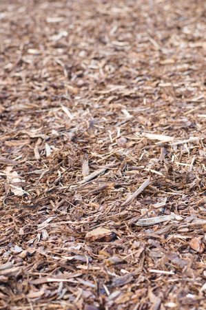 bark mulch: Natural pine tree bark used as a soil covering for mulch Stock Photo