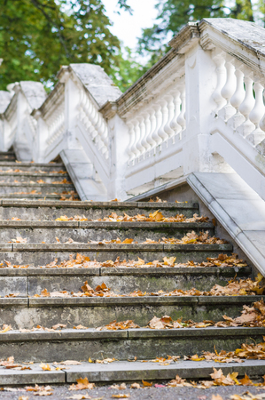 concrete steps: Outdoor retro style stairs with ornate railing, dry autumn leaf on steps