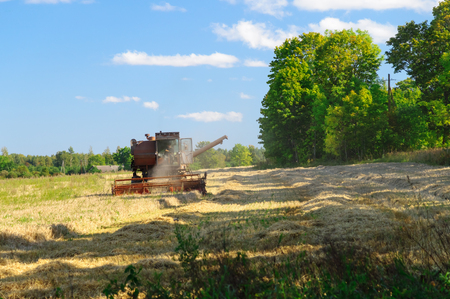 harvest time: Old soviet combine harvester working in a field, harvest time concept Stock Photo