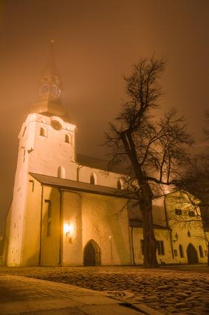 marys: St Marys Cathedral Dome Church on frosty misty night, Tallinn, Estonia. Wide angle view