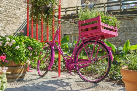 Romantic urban scene. Pink vintage bicycle with flower pots in pannier and couple on background. Dating concept Stock Photo