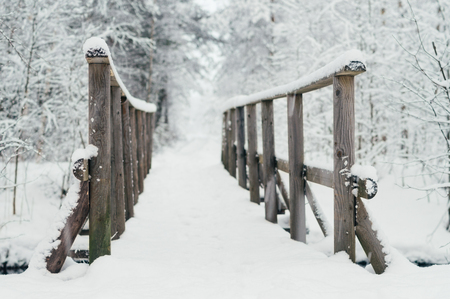 wintery: Wooden bridge covered by snow in wintery forest