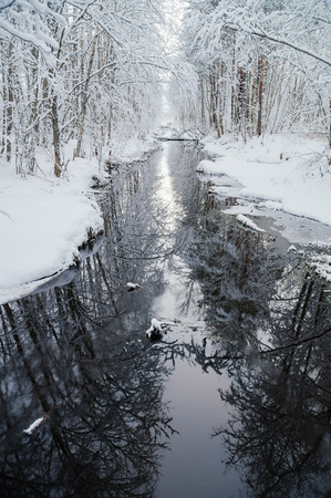 vertical composition: Water channel with snowy trees reflection, vertical composition Stock Photo