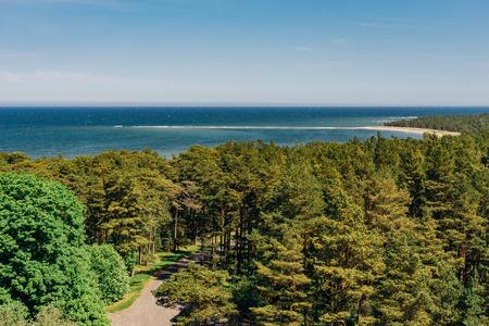 Top view on coastline and coniferous forest of Hiiumaa island, Estonia Stock Photo