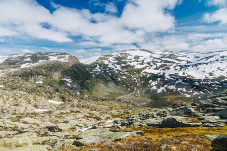jostedal: Norwegian tundra landscape and snowy mountains on background Stock Photo