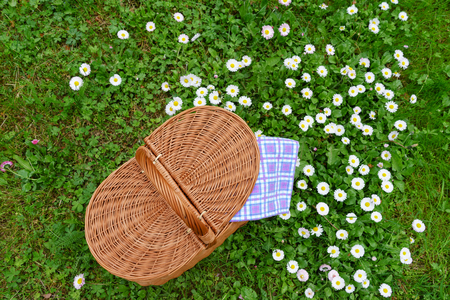 Picnic basket and blue white checkered napkin on lawn with daisy flowers. Top view. Weekend break concept