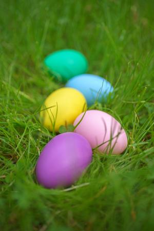 Colorful eggs on fresh springtime grass. Happy easter background Reklamní fotografie