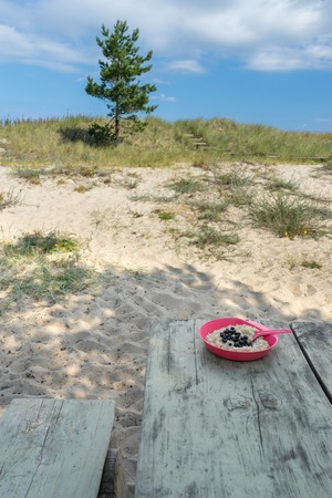 Plate of oatmeal with blueberries on the campsite table. Simple breakfast for hikers and travelers