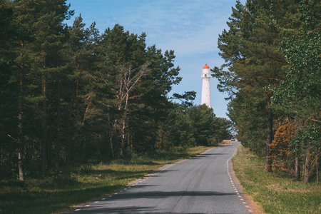 Road leading to lighthouse through pine forest, nordic landscape