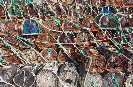 lobster pot: crab pots