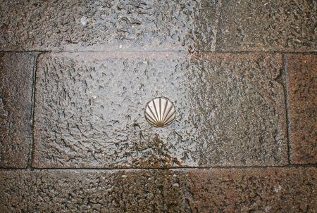 galicia: Scallop in pavement Stock Photo