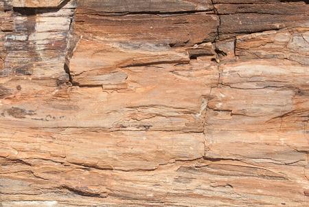petrified fossil: Petrified forest, outside of Khorixas, Namibia Stock Photo