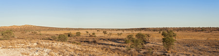 south africa: Dry Nossob River in the Kgalagadi Transfrontier Park